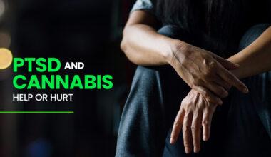 PTSD Cannabis