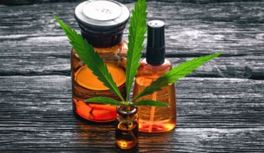 Find Out Why Consumers Increase Their CBD Usage