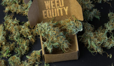Delivery Answer to Weed Equity